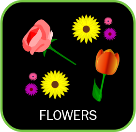 icon showing different flowers that can be grown