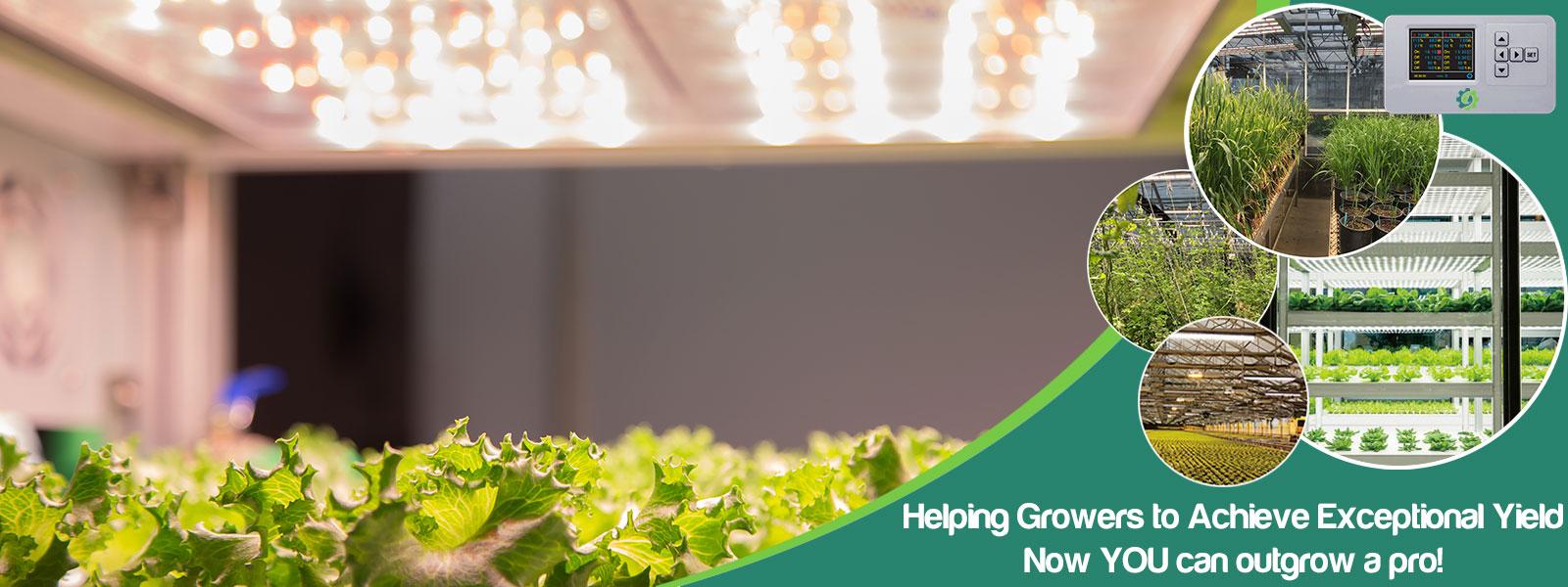 Fractal - full spectrum LED grow lights for vertical farming